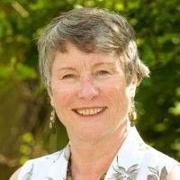 Sue Anne Linde